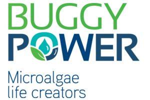 http://ccilc.pt/en/wp-content/uploads/2020/07/buggypower-300x200.jpg